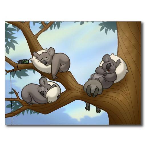 Sleeping Koala Postcard | Animal
