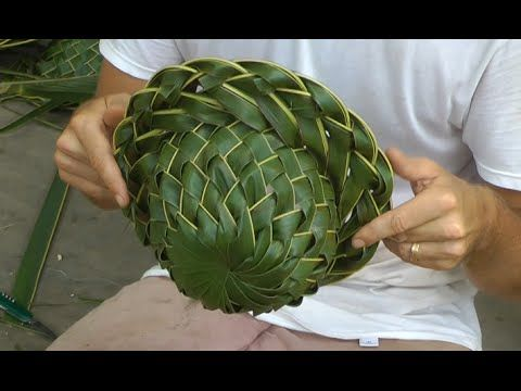 How To Make A Coconut Palm Leaf Hat Part 1 Of 2 Youtube With