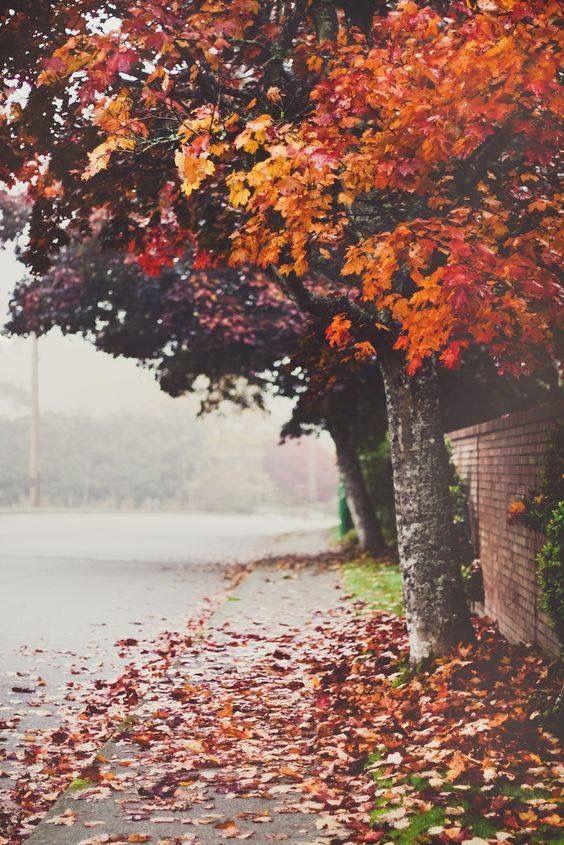 What autumn means days get shorter. rain. melancholic