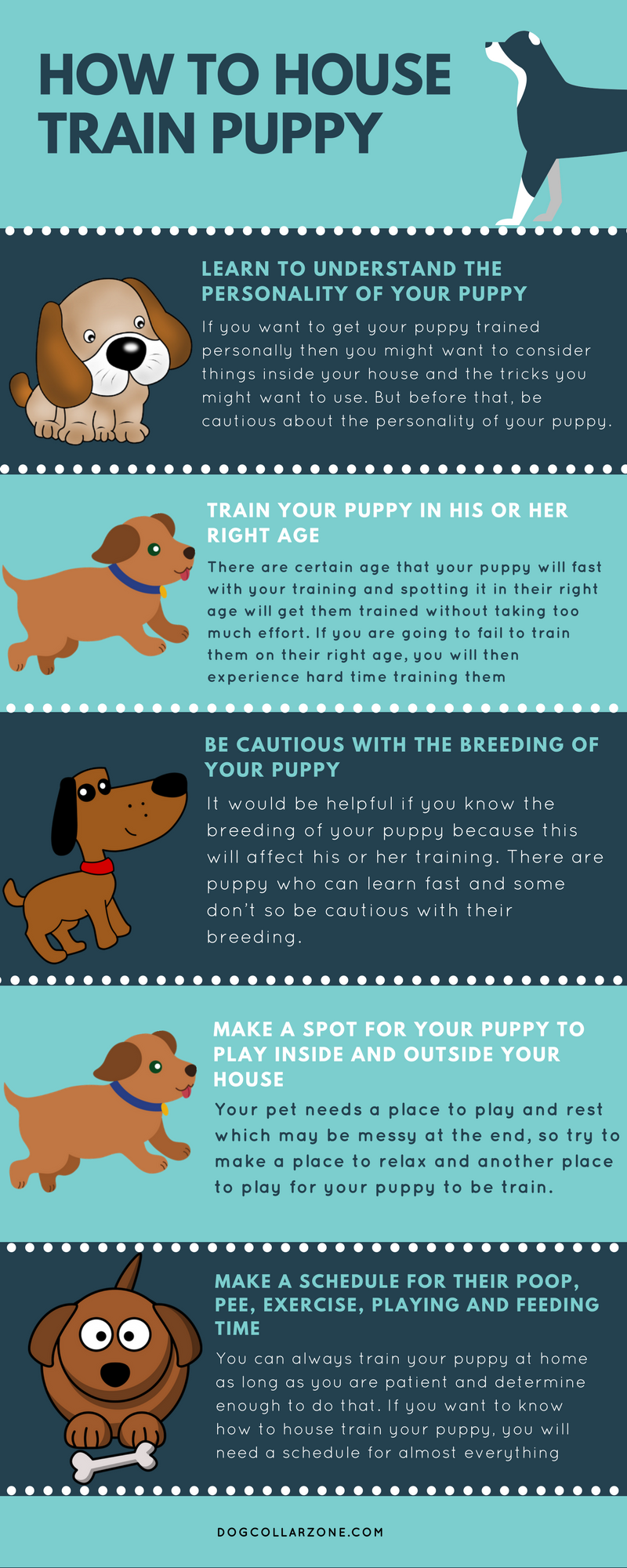 Http://www.dogcollarzone.com/how To House Train Puppy/ Many People Want To  Have Their Puppy Trained Especially When They Are Suffering Through Their  Bad ...
