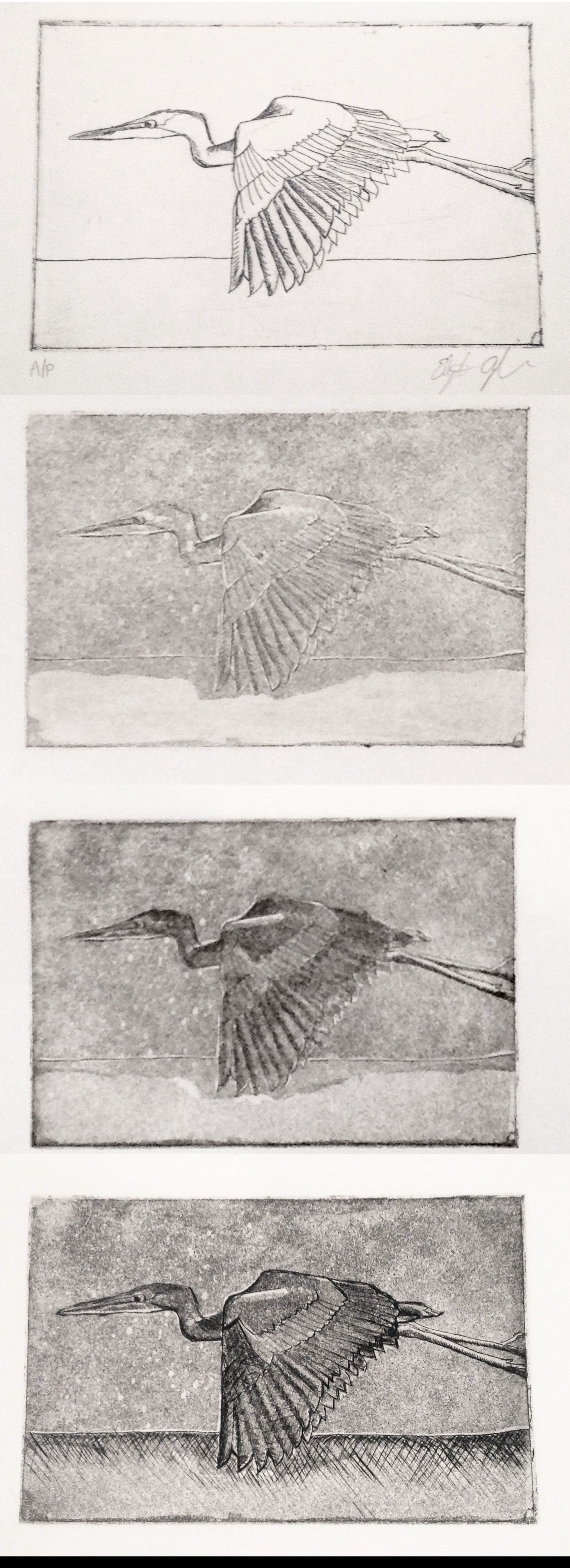 Hard ground etching with dry point. The evolution of a print by Liz Ayerle