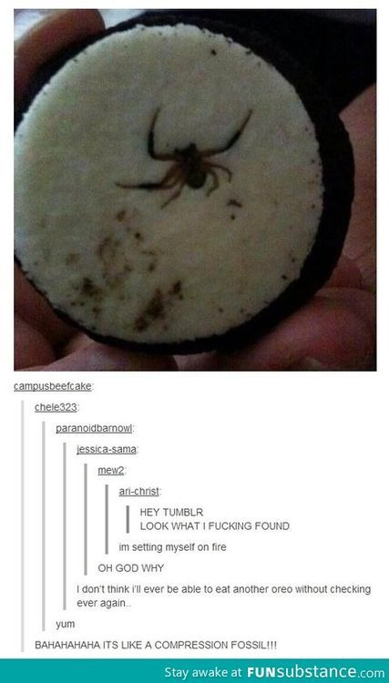 THIS is why the proper way of eating an Oreo IS opening it first...OH MY GOD. I never open them before eating them, imagine all the damn spiders I've eaten!!