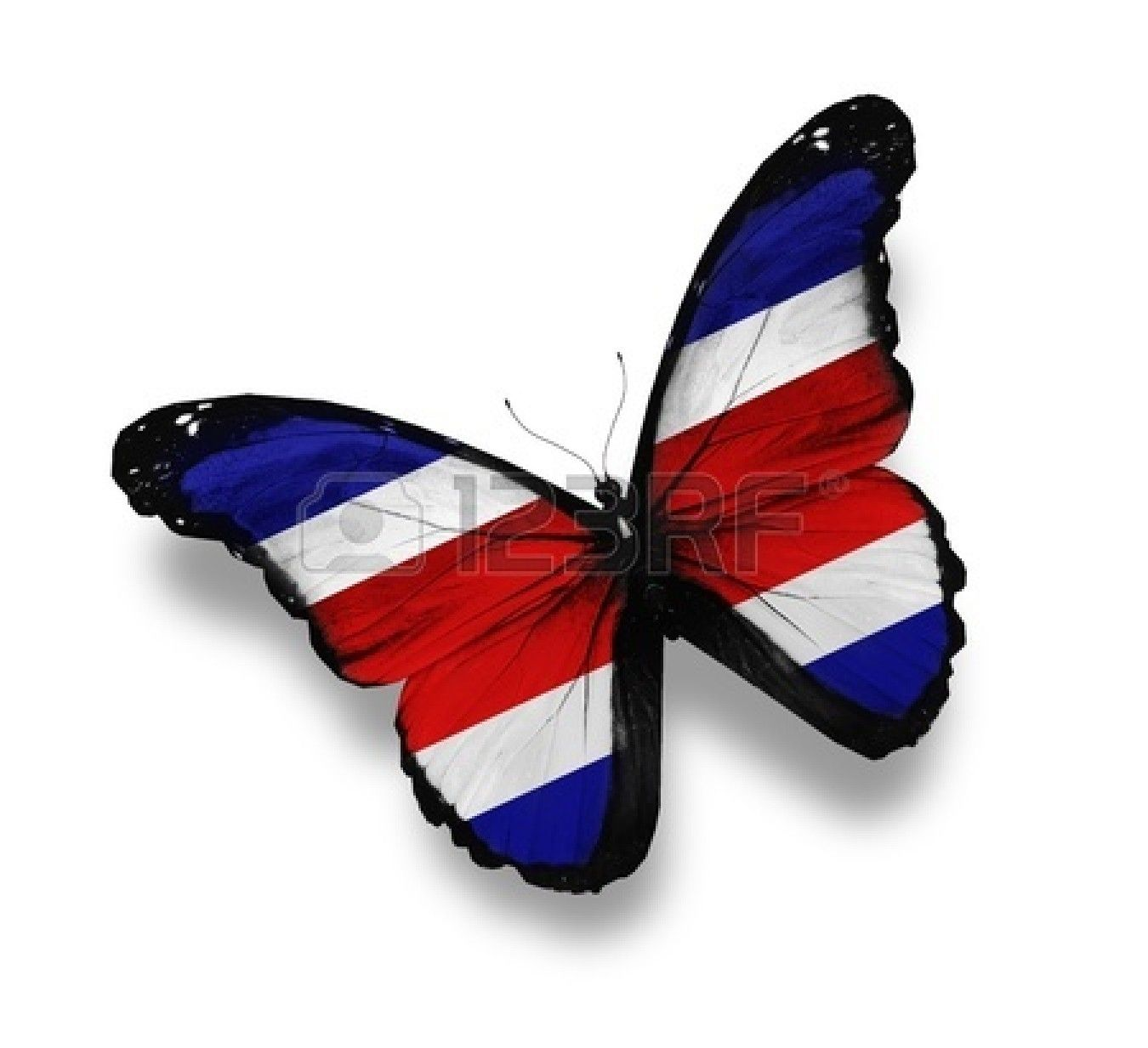 Bandera De Costa Rica en forma de mariposa | Dibujos | Pinterest ...