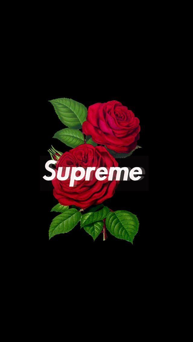 supreme rose wallpaper iphone image by Wallpaper
