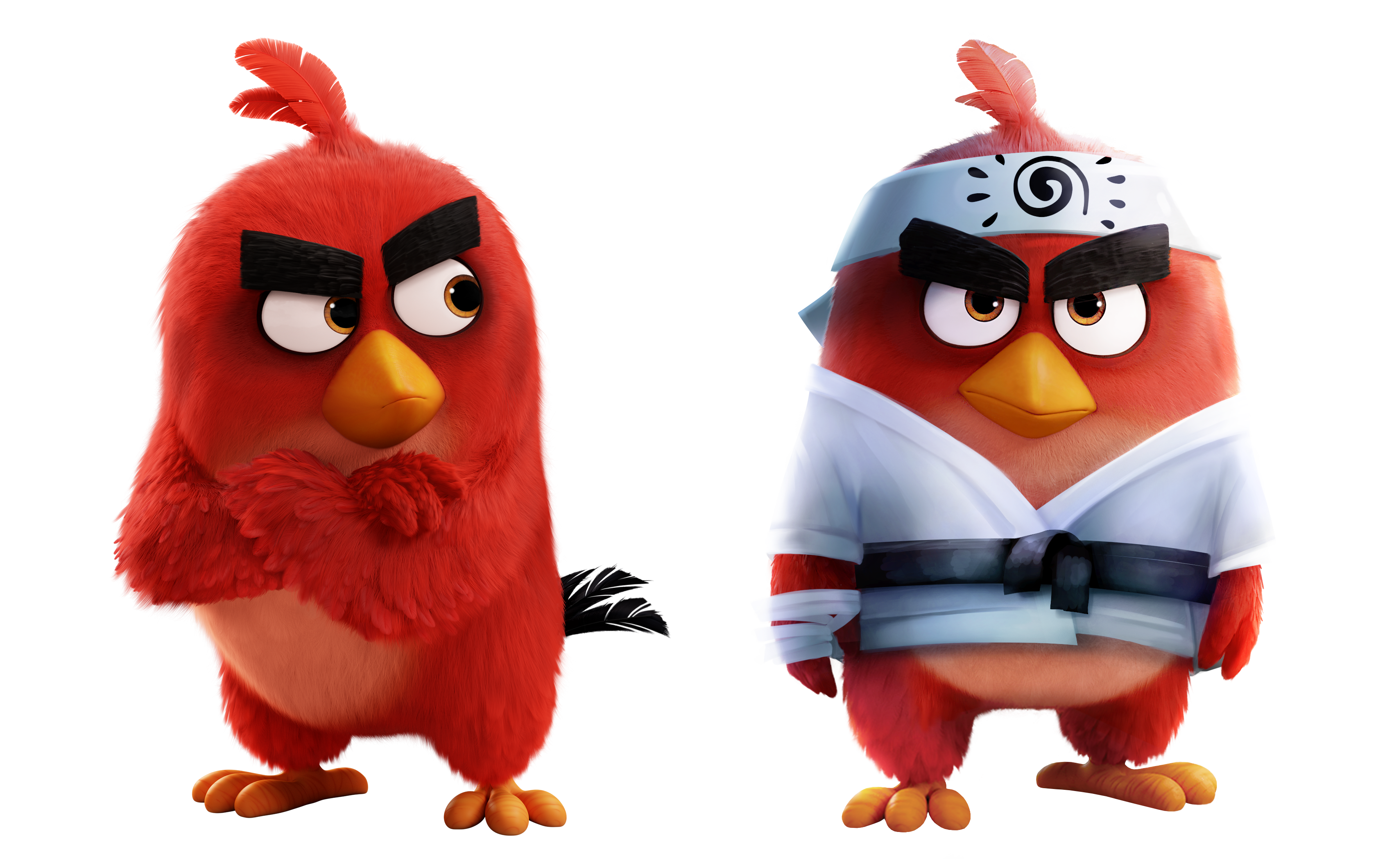 Red Angry Birds Wiki Fandom Red Angry Bird Angry Birds Star Wars Animated Cartoons
