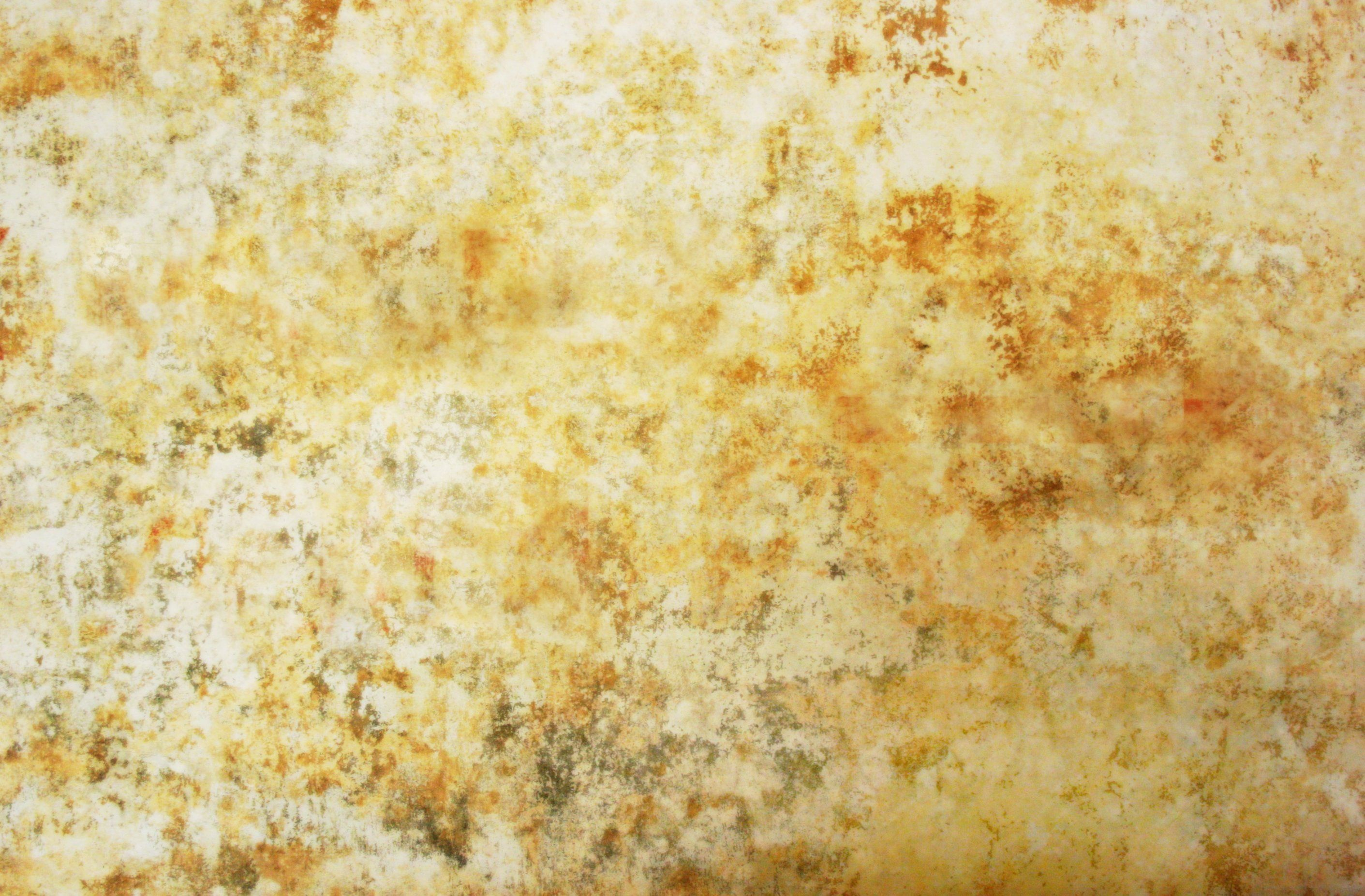 moldy wall texture - Google Search | References | Pinterest | Wall ...