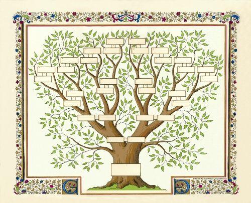 Genealogie Il Est Reellement Passionnant De L Approfondir Lorsque L