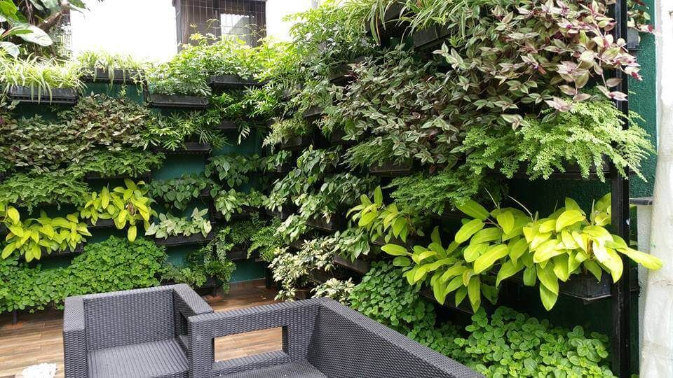 Ordinaire Vertical Garden | Green Wall | Green Matrix | Vertical Garden Kochi | Vertical  Garden Kerala
