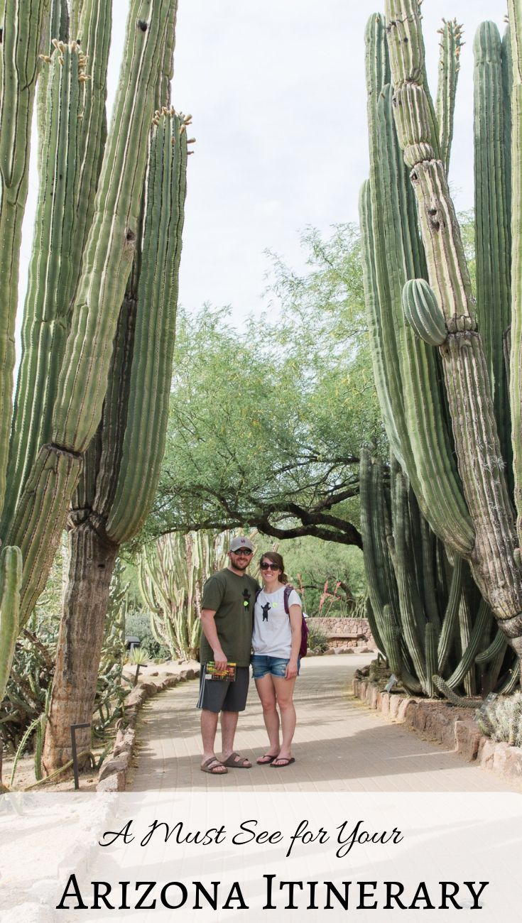 Pictures of Desert Botanical Gardens in Phoenix, Arizona #botanicgarden