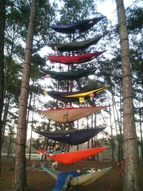 bunk hammocks  when everyone is fighting for the same two tree u0027s bunk hammocks  when everyone is fighting for the same two tree u0027s      rh   pinterest