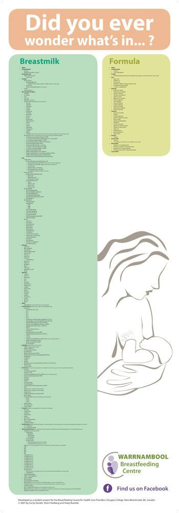 Poster - Whats In Breast Milk Poster  Baby Food -4394