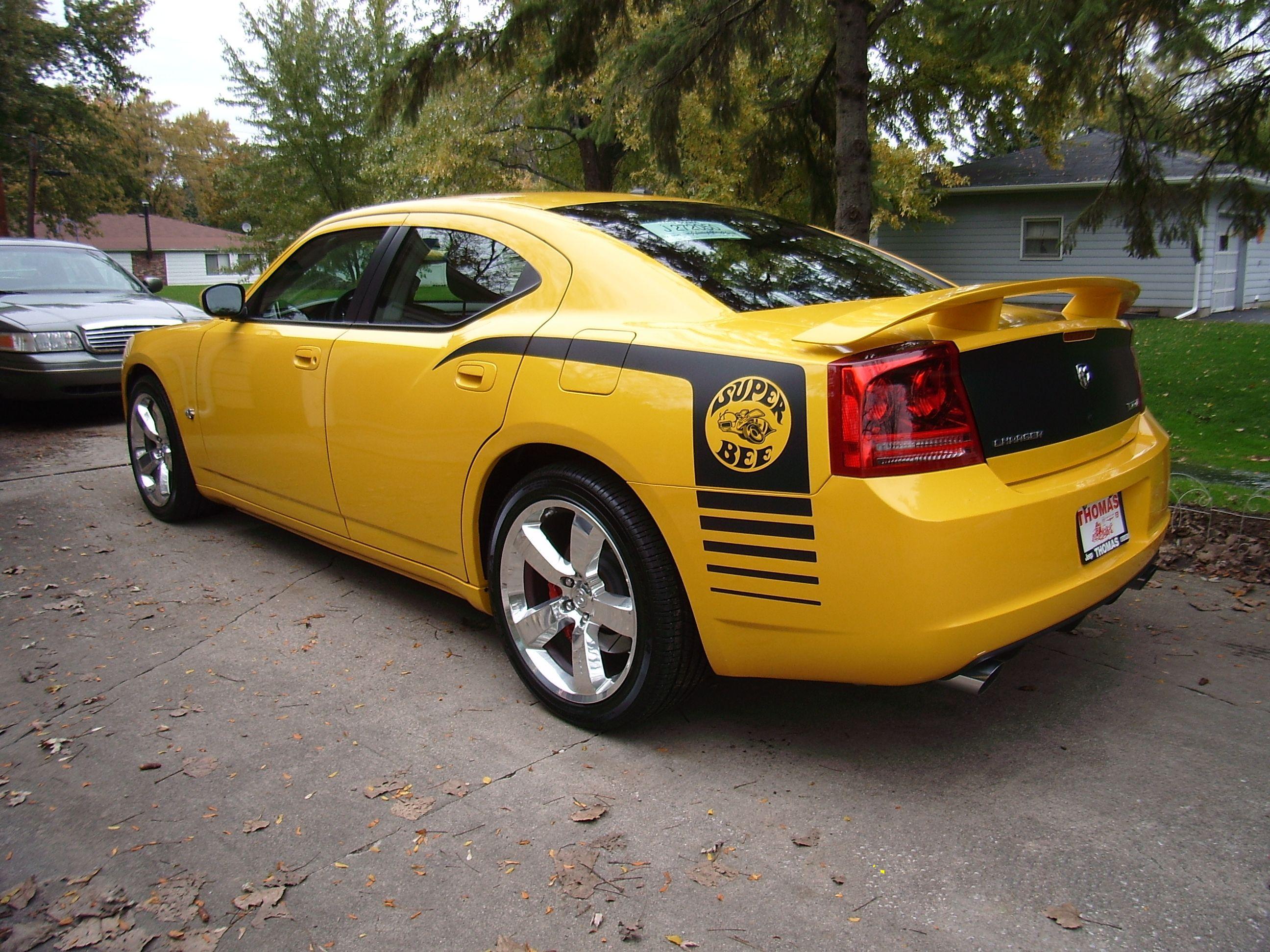 Dodge Charger SRT8 Super Bee  Cars  Pinterest  Dodge chargers