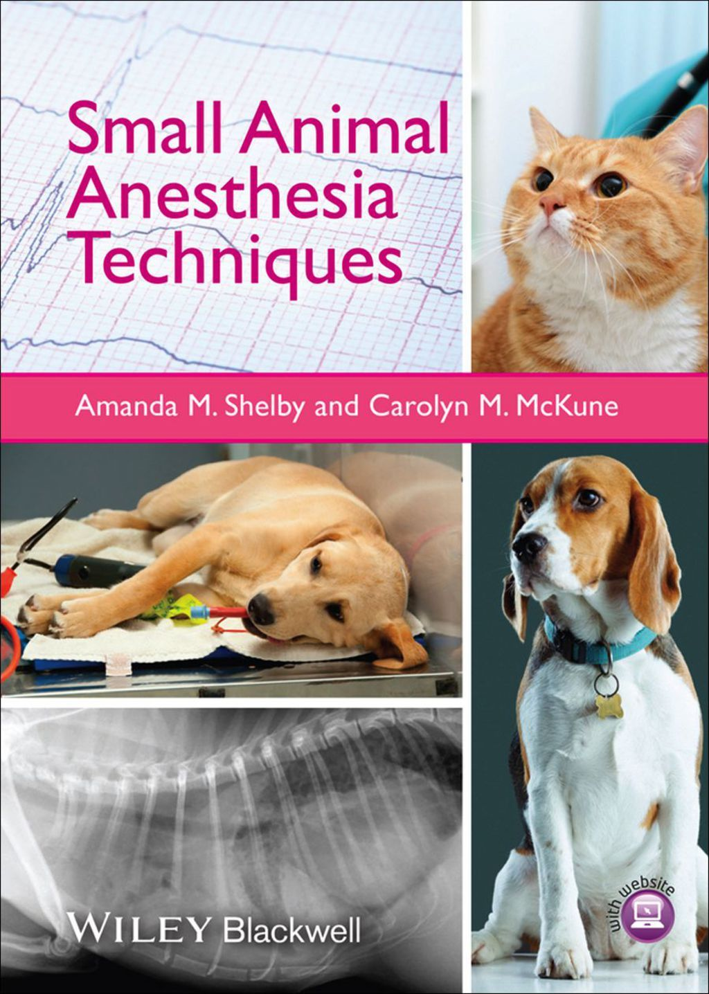 Small Animal Anesthesia Techniques (eBook)