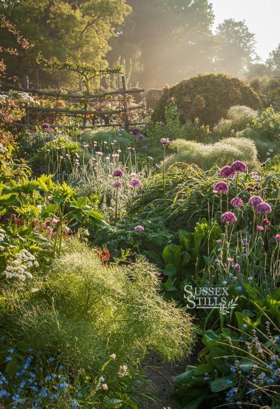 Through The Garden IGPOTY beautiful gardens winner