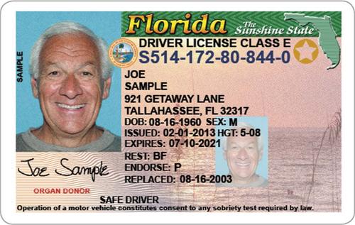 Florida Driver S License Enhanced Novelty Id Card Template Drivers License Card Template