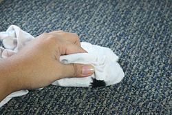 Get Tar out of Carpet - wikiHow