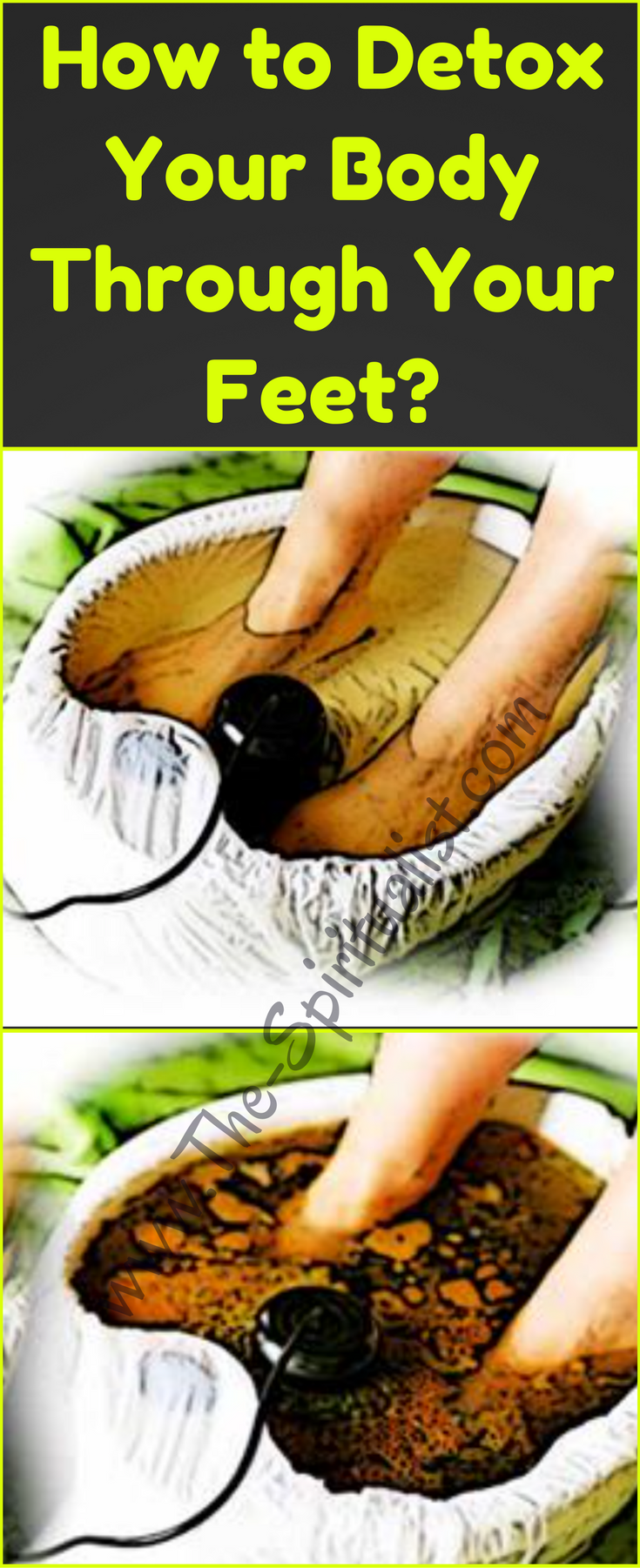 Detox spin dizzyspinners look feel younger detoxification of the body through the feet is an excellent way to eliminate toxins without the need to change your daily nutrition furthermore feet detox nvjuhfo Choice Image