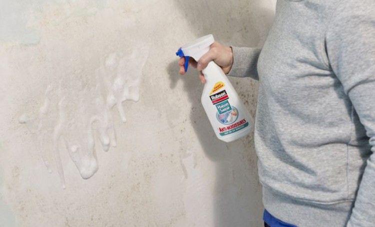 Nettoyer Et Traiter Un Mur Couvert De Salpetre Salpetre Nettoyage Facade Traitement Humidite