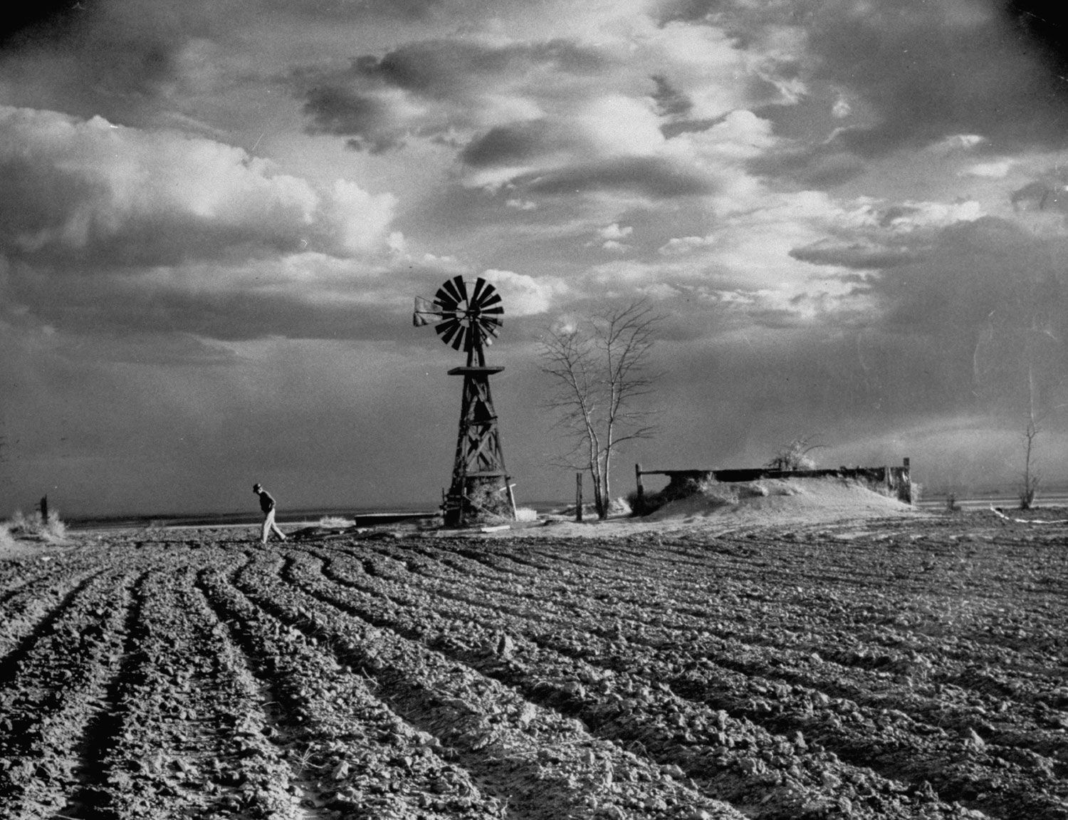 'Plague Upon the Land' Scenes From an American Dust Bowl