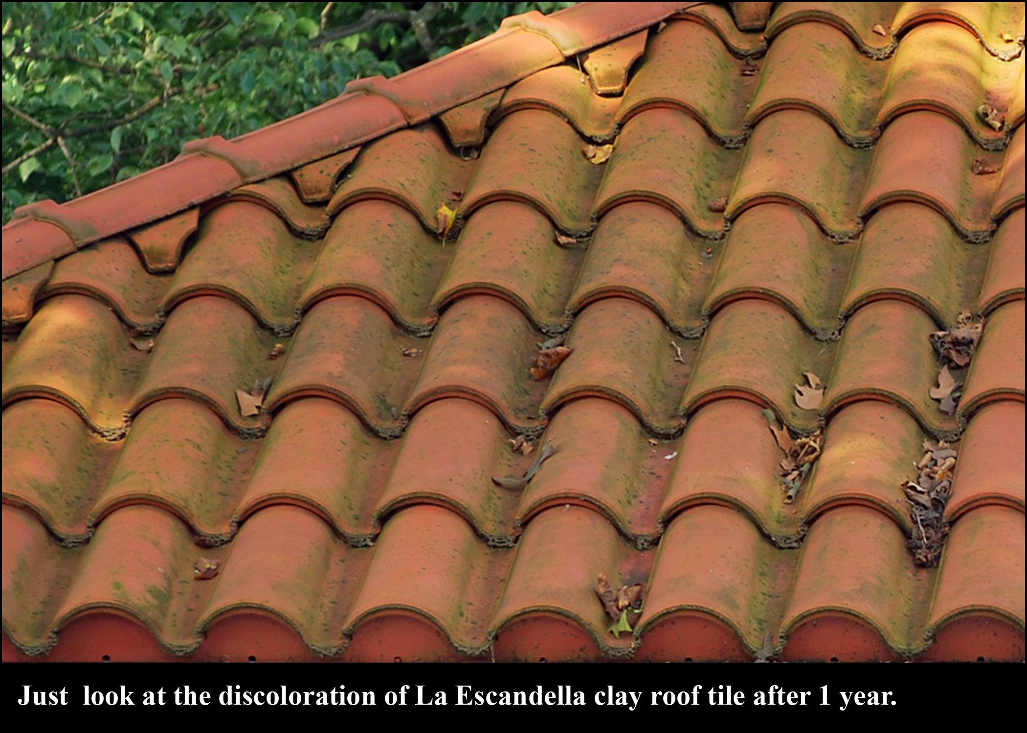 You dont want this to happen to your roof these la escandella you dont want this to happen to your roof these la escandella tiles ceramic roof tiles dailygadgetfo Choice Image