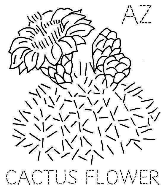 Cactus Flower Strategies Cacti along with succulents are plants and flowers this We have often favored so that as our own water employ Latest Images arizona Cactus Flower...