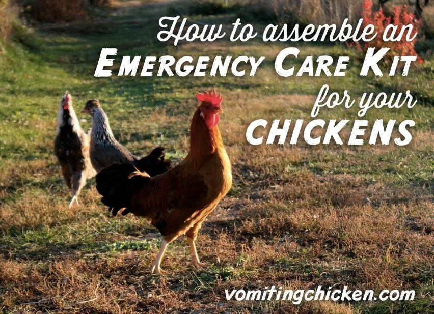 How to assemble an Emergency Care Kit for your chickens