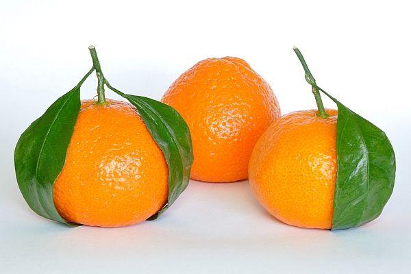 citrus ajuta cu pierderea în greutate)