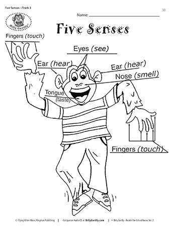 Teaching Children About The Five Senses Teaching Kids Teaching Colors Teaching