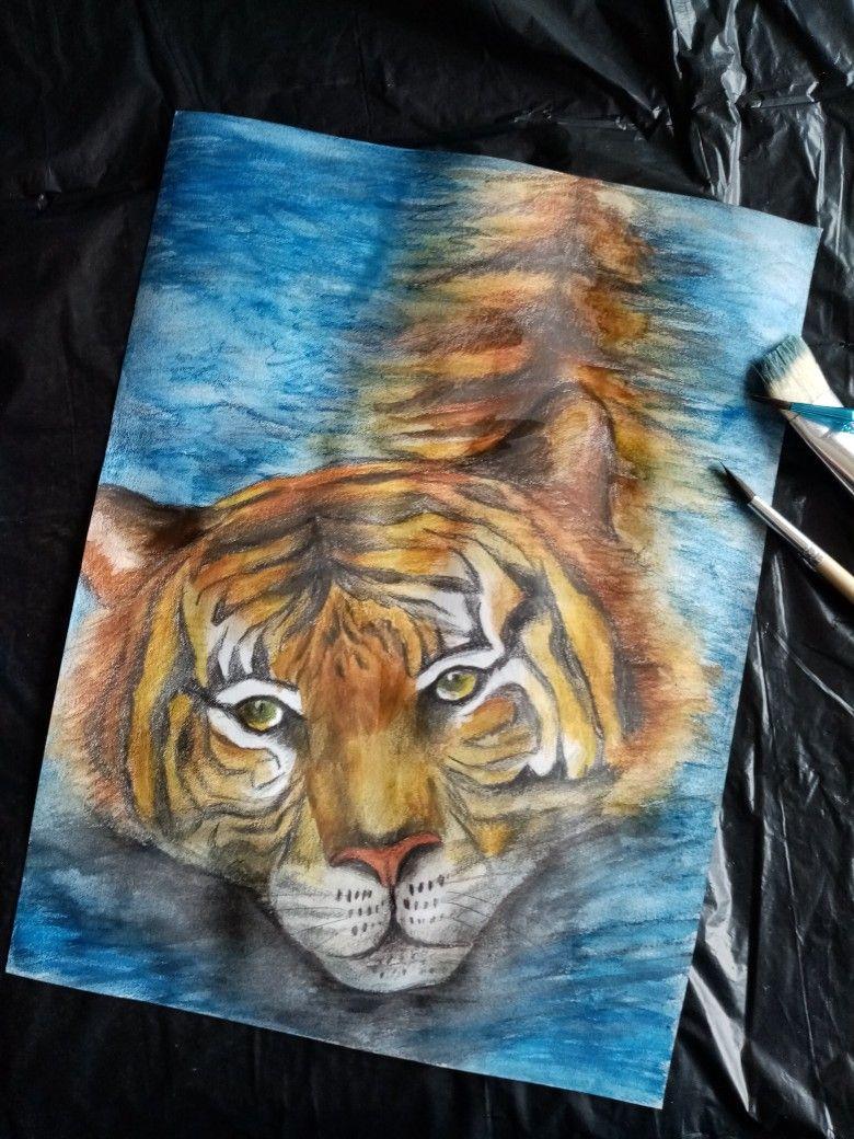 Tigre au crayons et aquarelles #artduconfinement #confinementcreatif #crayondecouleurs #aquarelles  #tigre