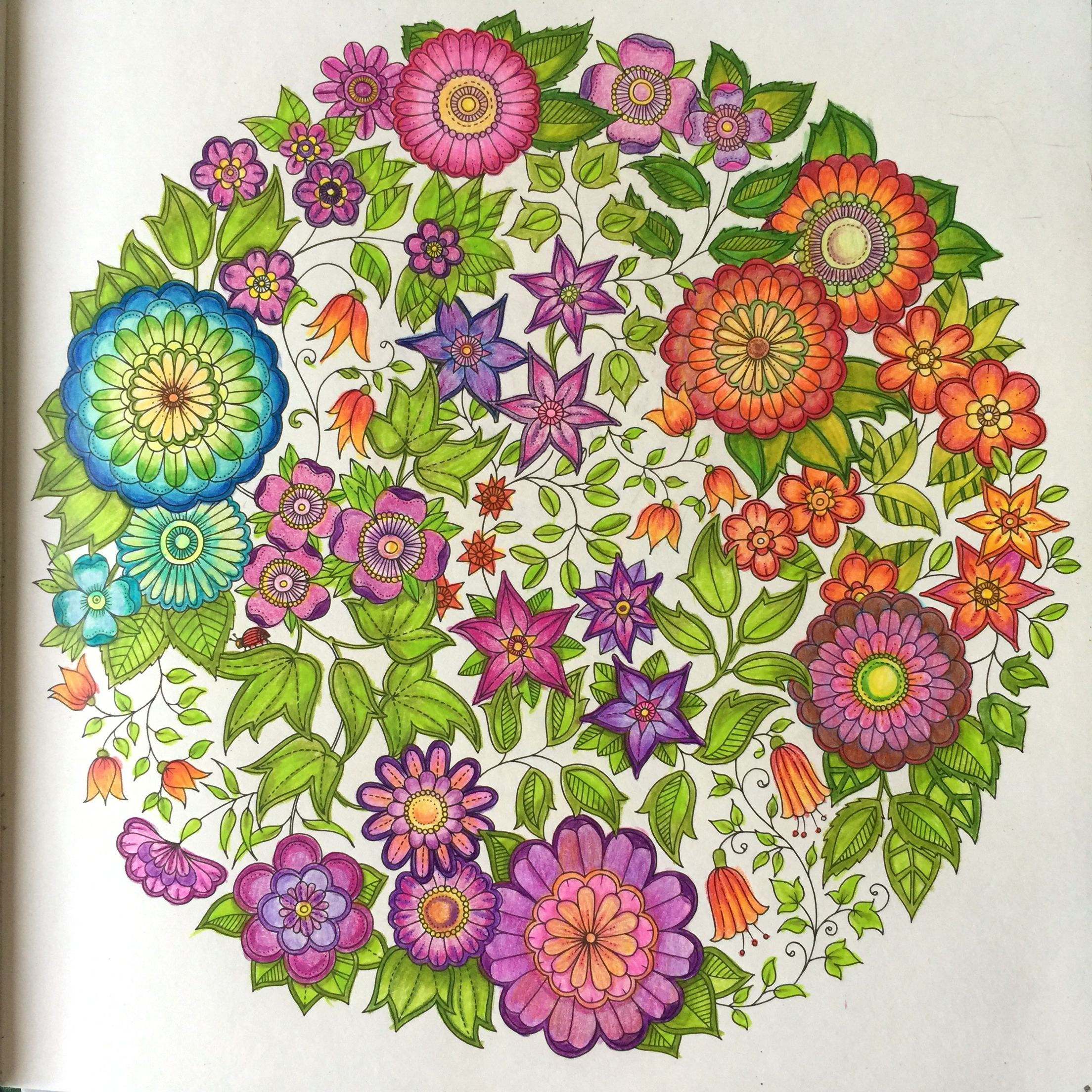 Pin By Pammy On Basford Planner Johanna Basford Coloring Basford Coloring Johanna Basford Coloring Book
