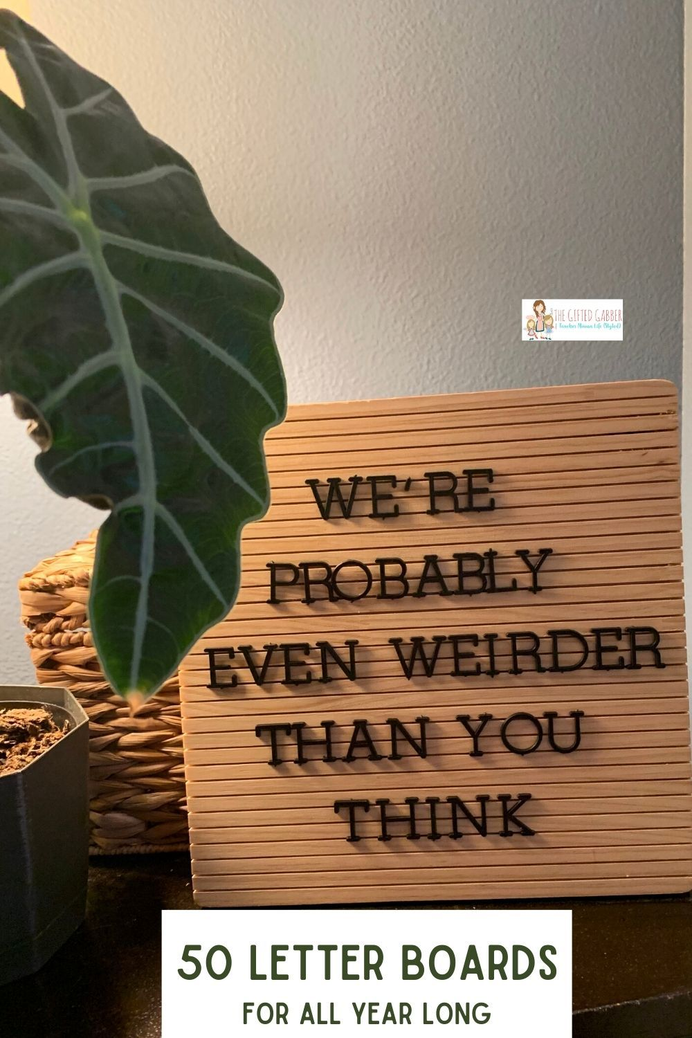 Funny Letter Boards for All Year Long