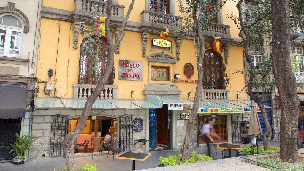 Big apartment Condesa México City - Apartments for Rent in ... |Condesa District Mexico City