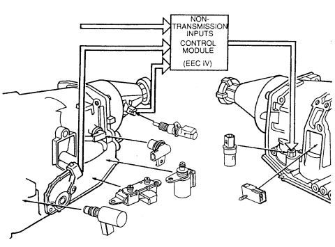 Clutch Wiring Diagram 93 Ford Escort