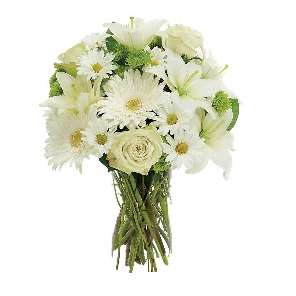 Arranjos flores brancas pesquisa google receitas pinterest arranjos flores brancas pesquisa google cheap flowers flowers for you white flowers izmirmasajfo
