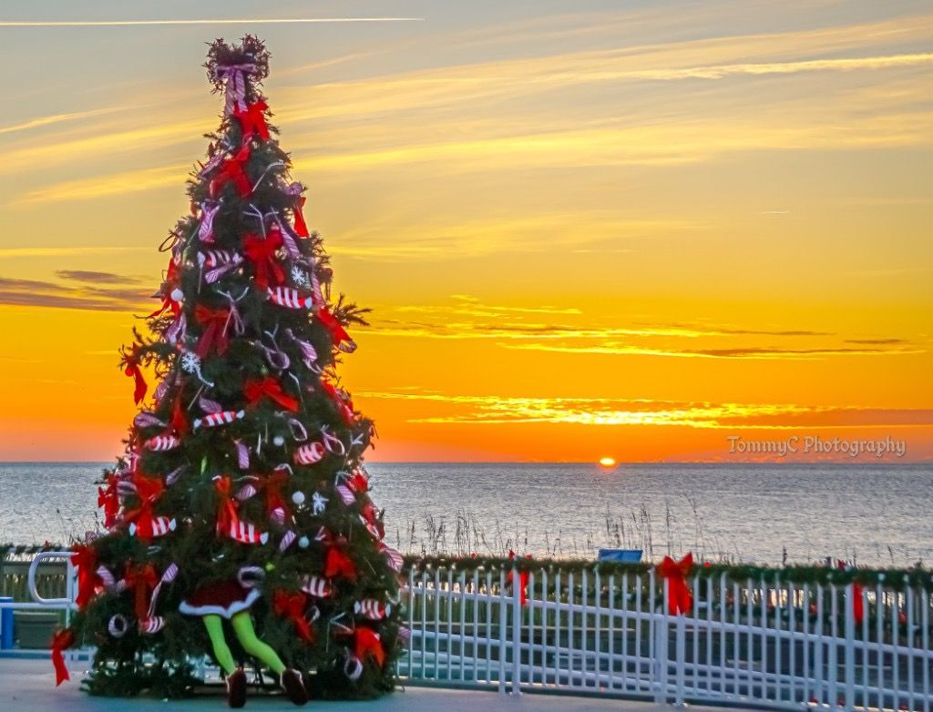 Things To During Christmas 2021 In Myrtle Beach The Countdown To Christmas Is On What Are Your Favorite Holiday Traditions Sunrisesunday Visit Myrtle Beach Myrtle Beach Hotels South Carolina Vacation