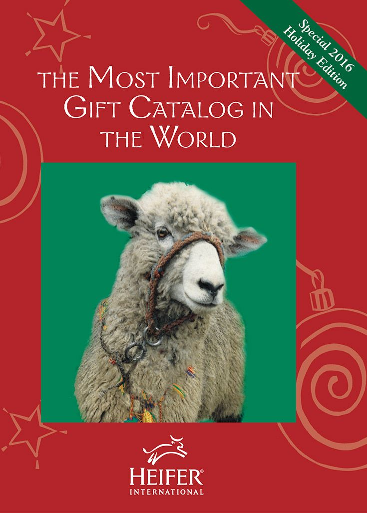 A donation to Heifer International is an easy, meaningful Christmas gift for him, her, friends, family and everyone in between.