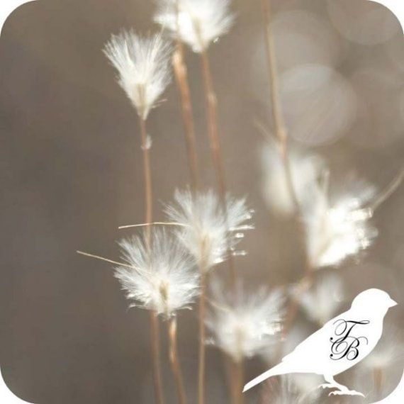 Free Shipping Sale Code NEWYEAR14 F Softer by 1000beautifulthings, $20.00