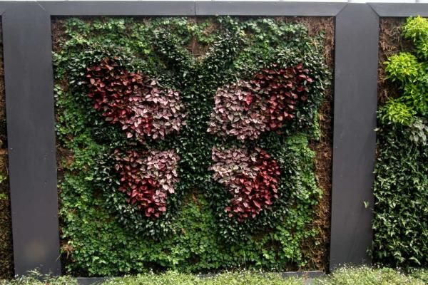 living wall aia floral spaces pinterest more living walls and wedding ideas