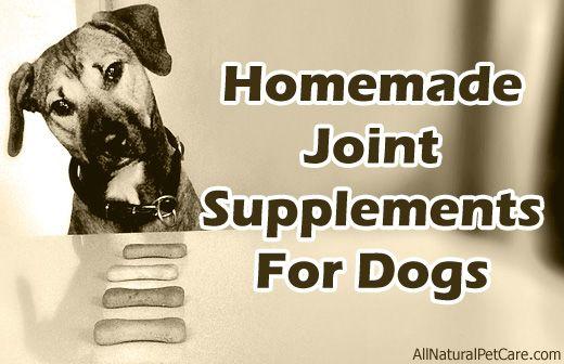 Homemade Joint & Arthritis Supplement Treat Recipe for #Dogs