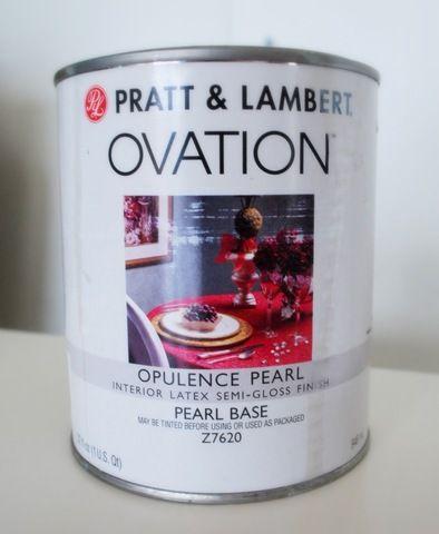 My New Best Friend Pearl Paint Metallic Paint Gloss Paint