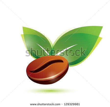 Green coffee bean chile photo 1