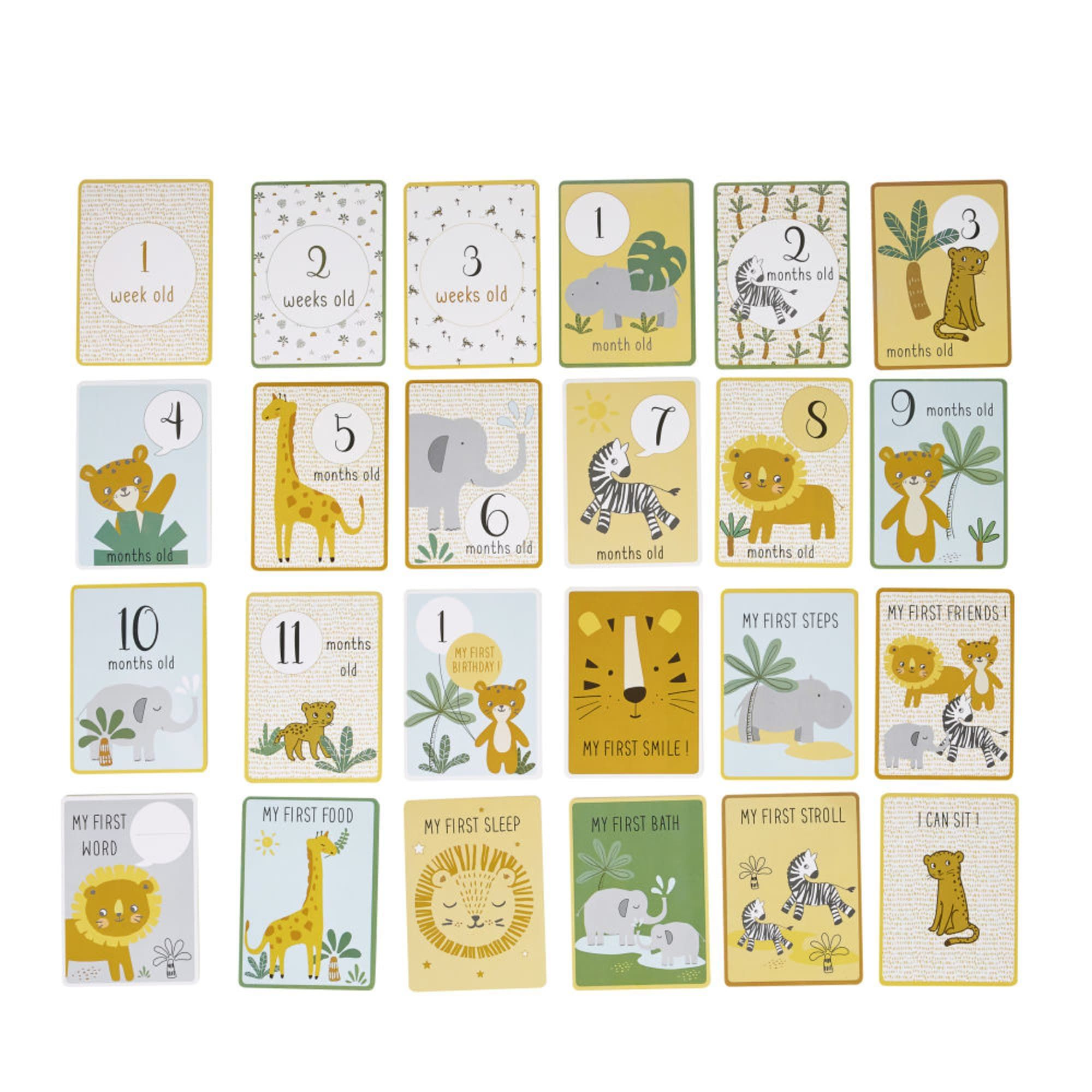 Printed Paper Stages Cards for Baby's First 12 Months   Maisons du ...