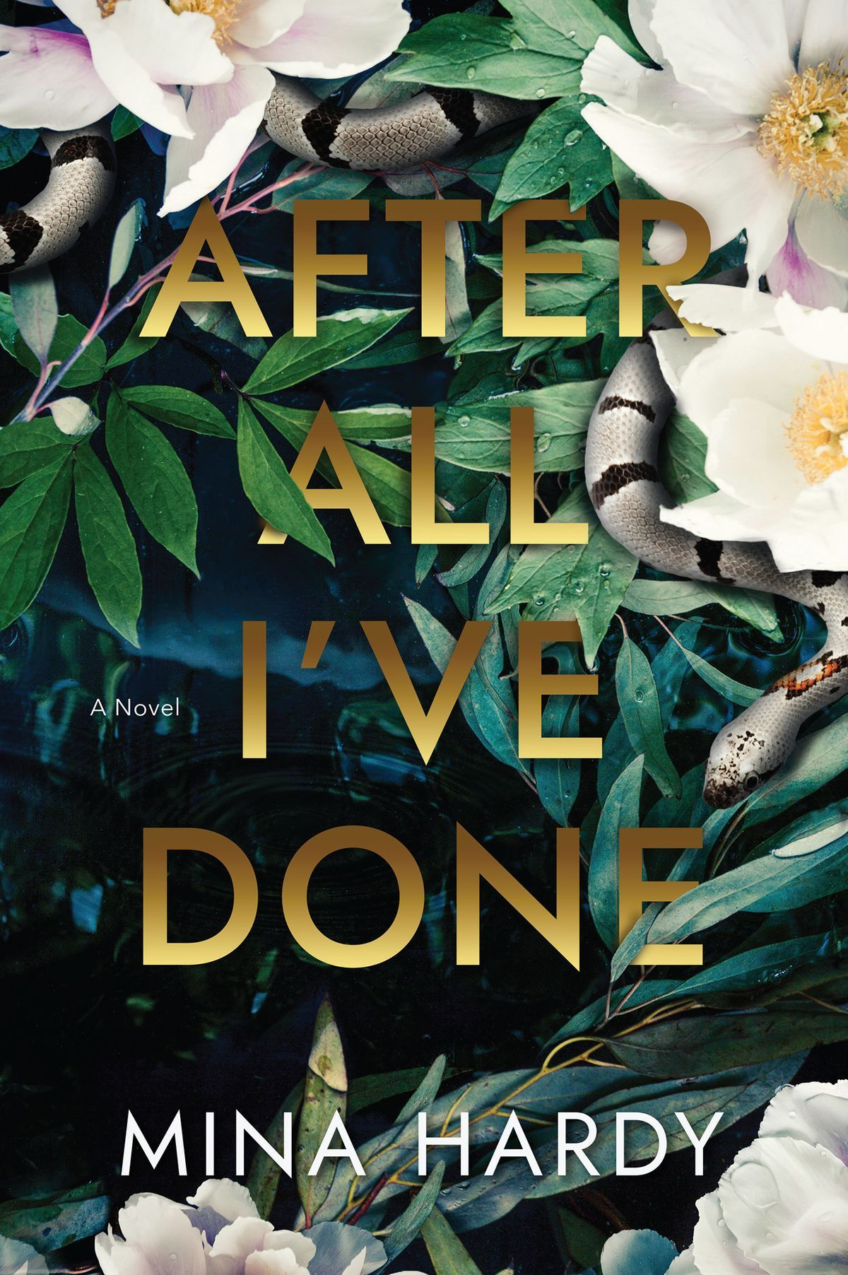 Pdf After All I Ve Done By Mina Hardy In 2020 Psychological Suspense Book Review Blogs Suspense Thriller