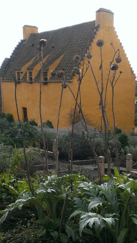 Culross Palace. School Trip and its been in my heart ever since