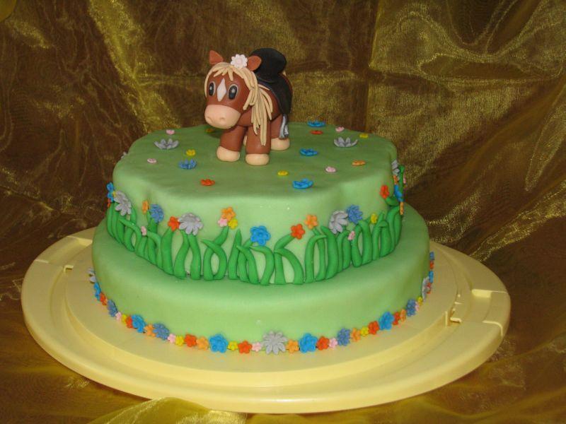 Horse Cake Recipes Pinterest Horse Cake Cake And Cake Designs