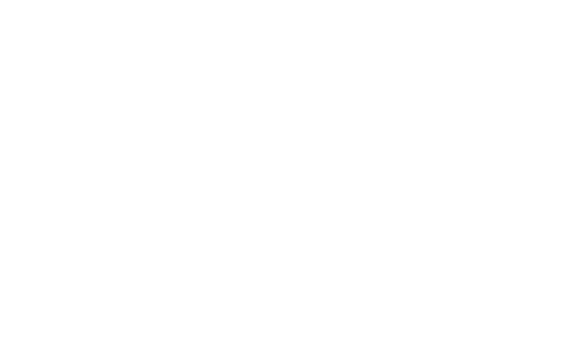 The Fashion Adviser