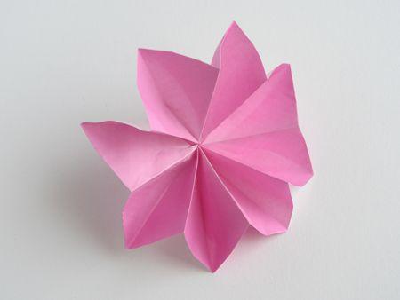 Origami carnation origami pinterest origami carnation and flower origami carnation mightylinksfo Images