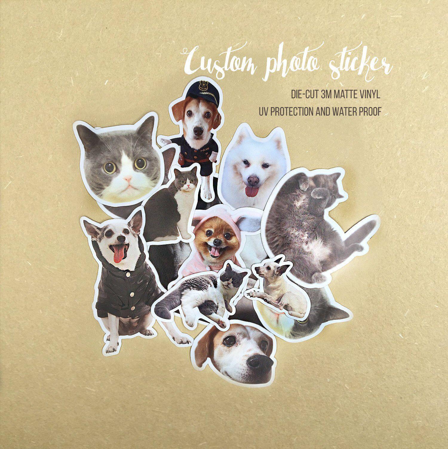 Cat Stickers Vinyl Custom Stickers Cute Custom Stickers Waterproof Custom Stickers Dog Stickers Pet Stickers