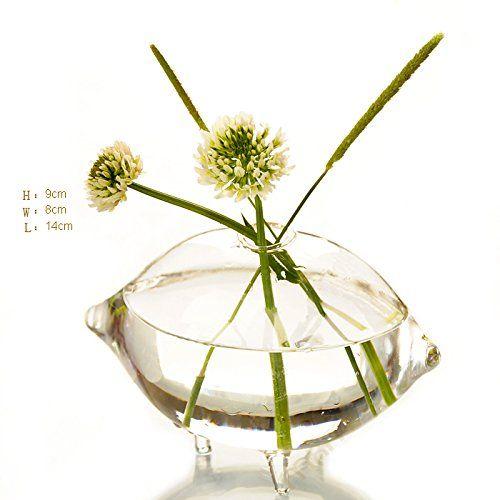 Amazon.com - Creative Olive Shaped Glass Vase for Plant -