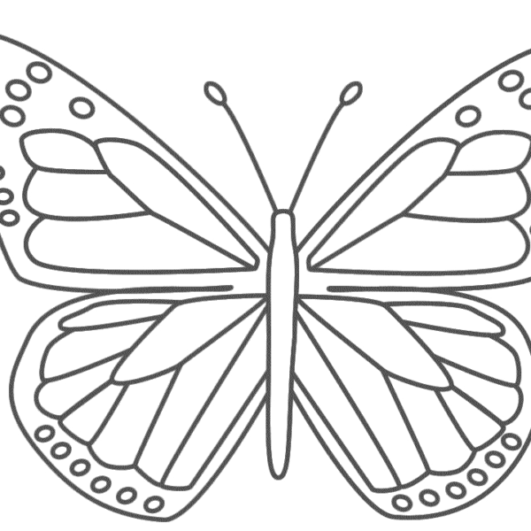 Monarch Butterfly Template Printable World Of Printable And Chart With Regard To Monarch Butterf Butterfly Template Butterfly Coloring Page Butterfly Stencil